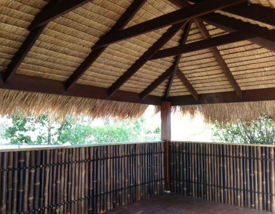 1.2m high bamboo